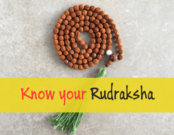 unknown-facts-about-rudraksha