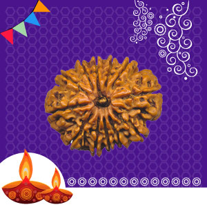 Buy 12 Mukhi Rudraksha online