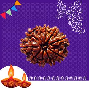 Buy 14 Mukhi Rudraksha online