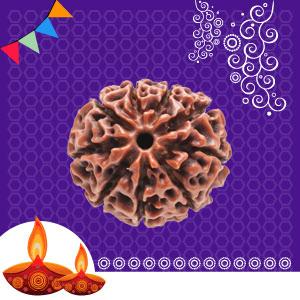 Buy 9 Mukhi Rudraksha online