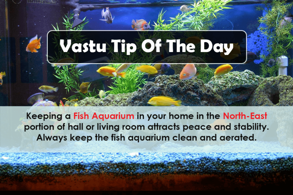 vastu tip of the day