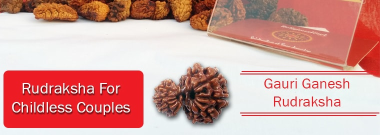 Rudraksha For Childless Couples